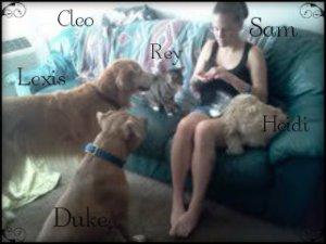 lexis,heidi, duke, rey, cleo2