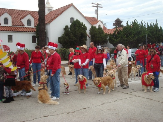 San Diego Golden Retriever Meetup Group
