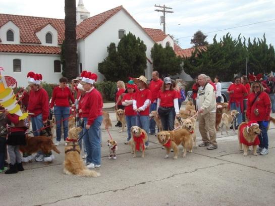 San Diego Golden Retriever Meetup Group