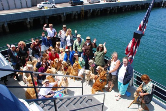 pet day on the bay2