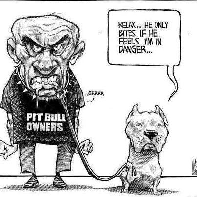 pit bull owner