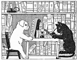 dog cat books