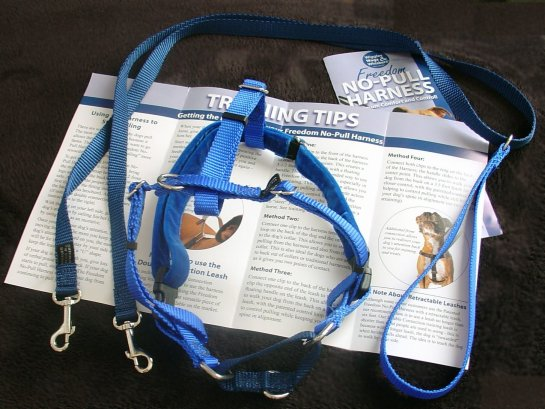 wiggles wags & whishers harness