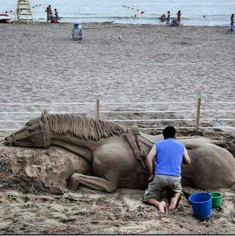 sand horse