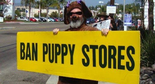 ban puppy stores