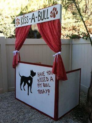 kiss-a-bull