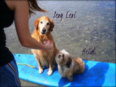 lexis-n-heidi-surf-lesson custom
